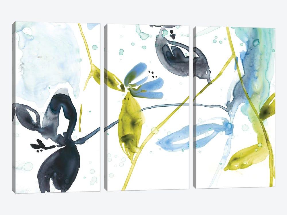 Hanging Garden II by Jennifer Goldberger 3-piece Canvas Print