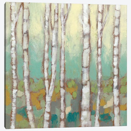 Kaleidoscope Birches I Canvas Print #JGO316} by Jennifer Goldberger Canvas Art