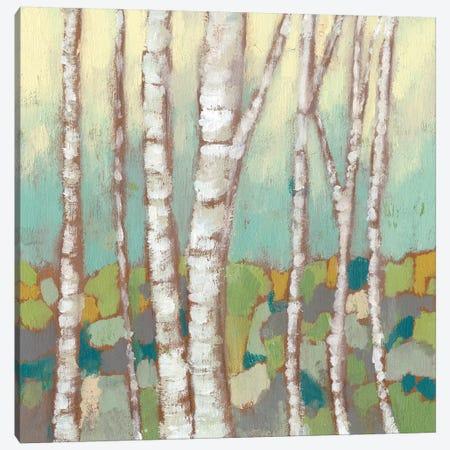 Kaleidoscope Birches II Canvas Print #JGO317} by Jennifer Goldberger Canvas Wall Art