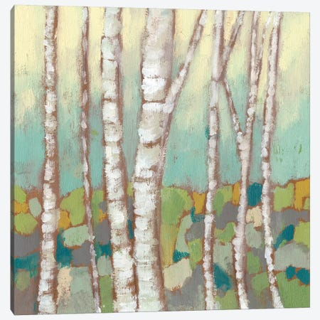 Kaleidoscope Birches II Canvas Print #JGO317} by Jennifer Goldberger Canvas Wall Art