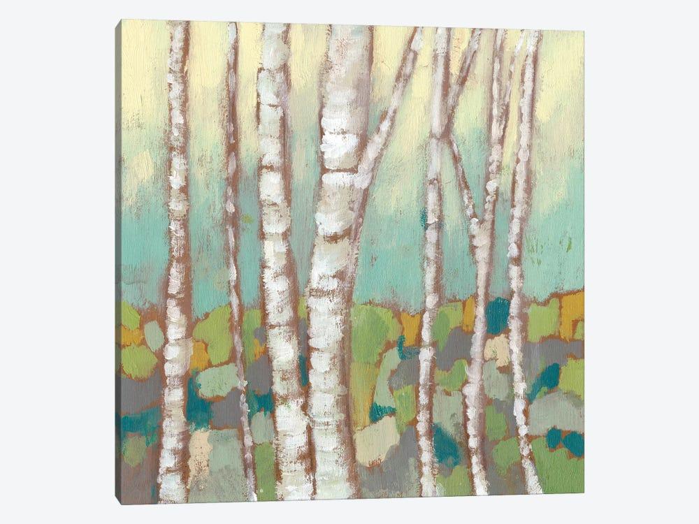 Kaleidoscope Birches II by Jennifer Goldberger 1-piece Canvas Art