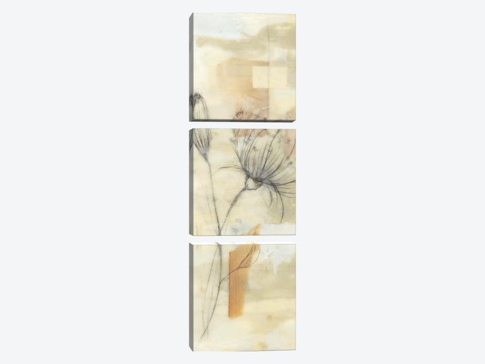 Neutral Lace I by Jennifer Goldberger 3-piece Canvas Wall Art