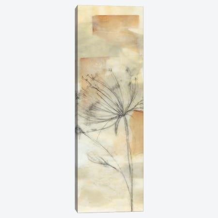 Neutral Lace II Canvas Print #JGO327} by Jennifer Goldberger Canvas Print