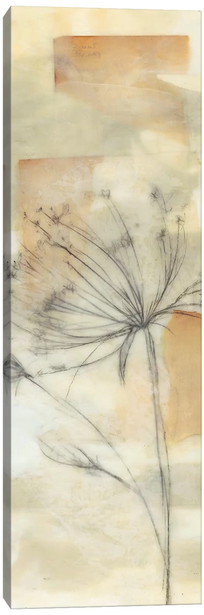 Neutral Lace II Canvas Art Print