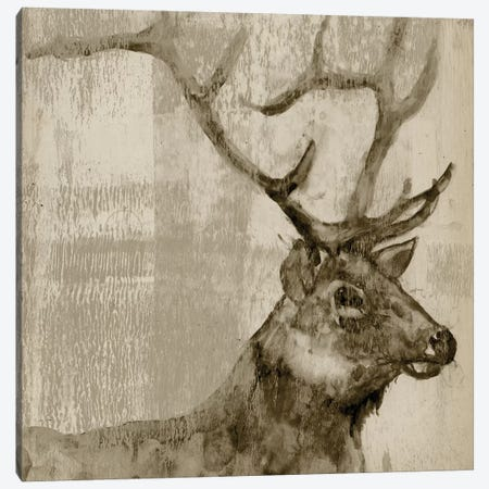 Sepia Elk Canvas Print #JGO330} by Jennifer Goldberger Art Print