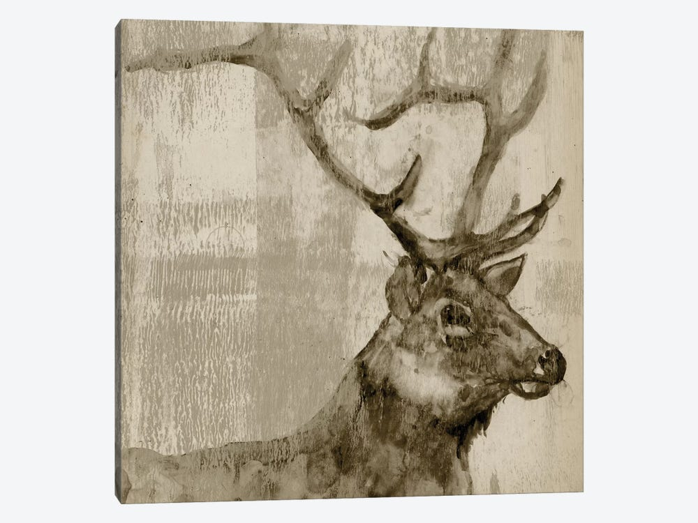 Sepia Elk by Jennifer Goldberger 1-piece Canvas Art Print