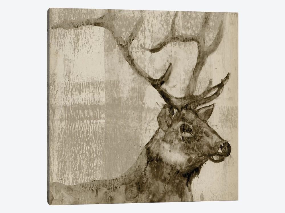 Sepia Elk by Jennifer Goldberger 1-piece Canvas Art Print