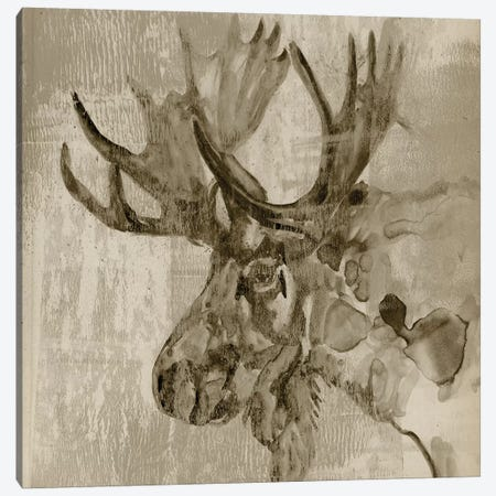Sepia Moose Canvas Print #JGO331} by Jennifer Goldberger Canvas Art Print