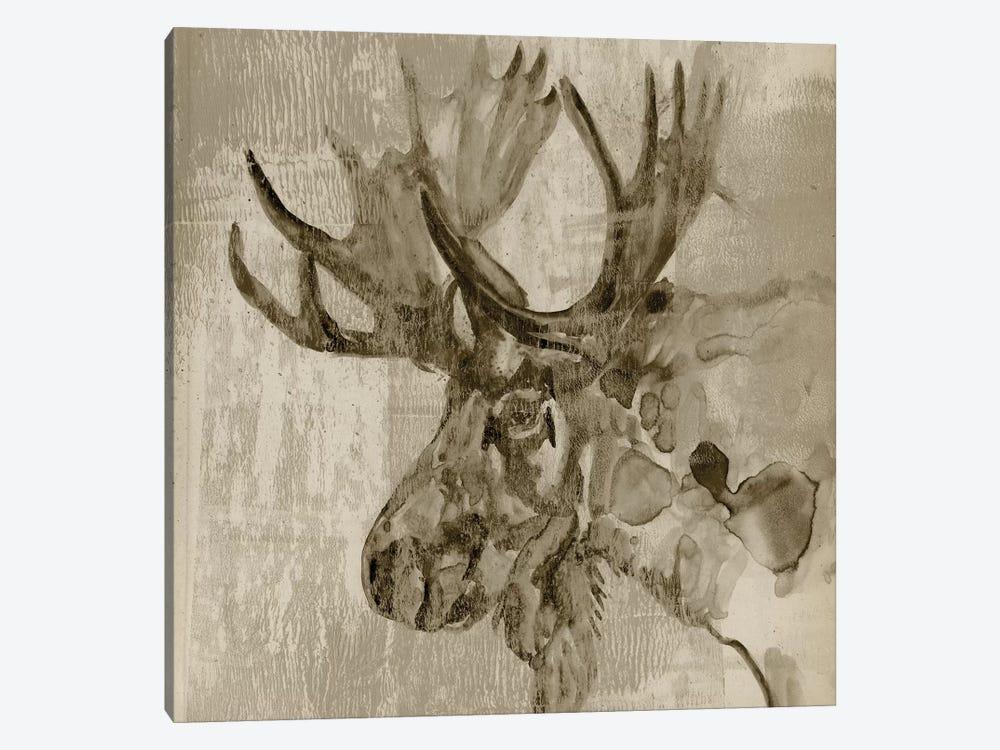 Sepia Moose by Jennifer Goldberger 1-piece Canvas Artwork