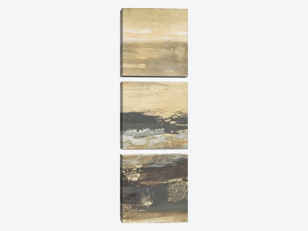 Terre Umber II by Jennifer Goldberger 3-piece Canvas Artwork