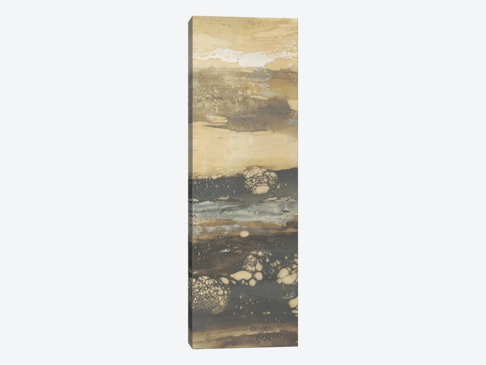 Terre Umber III by Jennifer Goldberger 1-piece Canvas Print