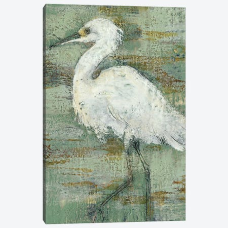 Textured Heron I Canvas Print #JGO339} by Jennifer Goldberger Canvas Print
