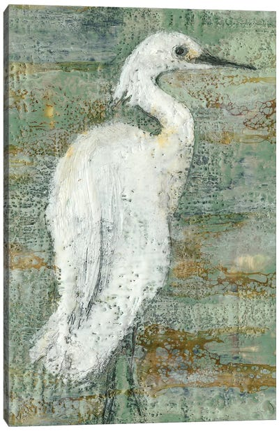 Textured Heron II Canvas Art Print