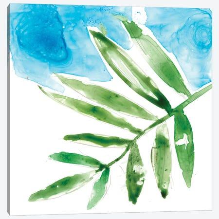 Tropical Display I Canvas Print #JGO345} by Jennifer Goldberger Canvas Print