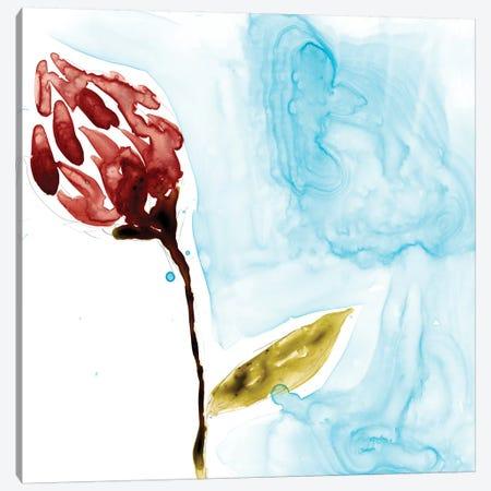 Tropical Display II Canvas Print #JGO346} by Jennifer Goldberger Canvas Art Print