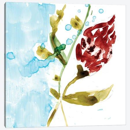 Tropical Display VII Canvas Print #JGO351} by Jennifer Goldberger Canvas Art Print