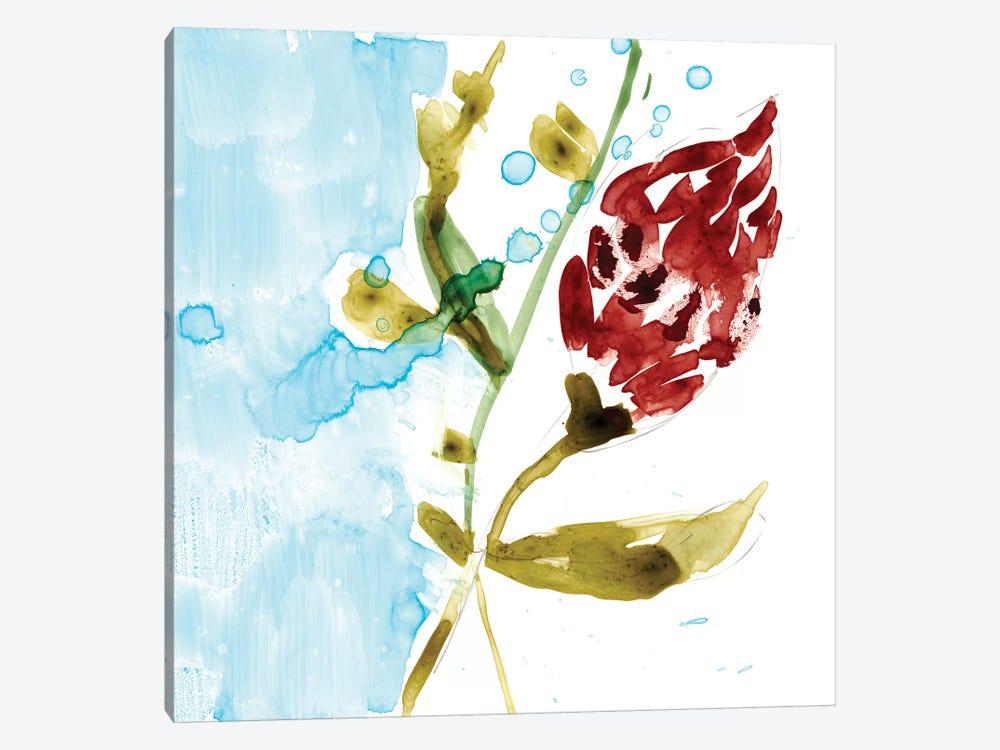 Tropical Display VII by Jennifer Goldberger 1-piece Canvas Art