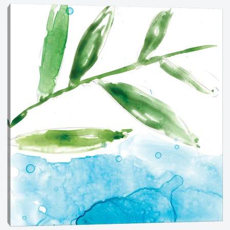 Tropical Display IX Canvas Print #JGO353} by Jennifer Goldberger Canvas Art Print