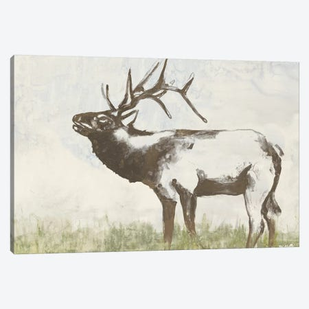 Wild Call I Canvas Print #JGO356} by Jennifer Goldberger Canvas Artwork