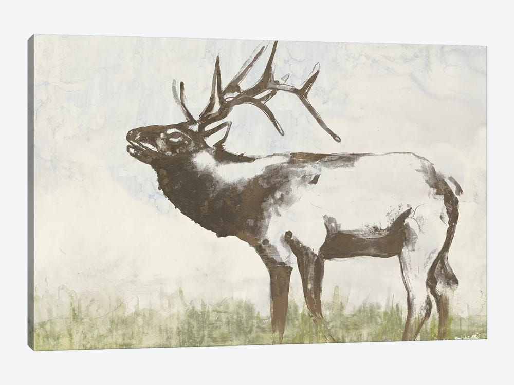Wild Call I by Jennifer Goldberger 1-piece Canvas Art Print
