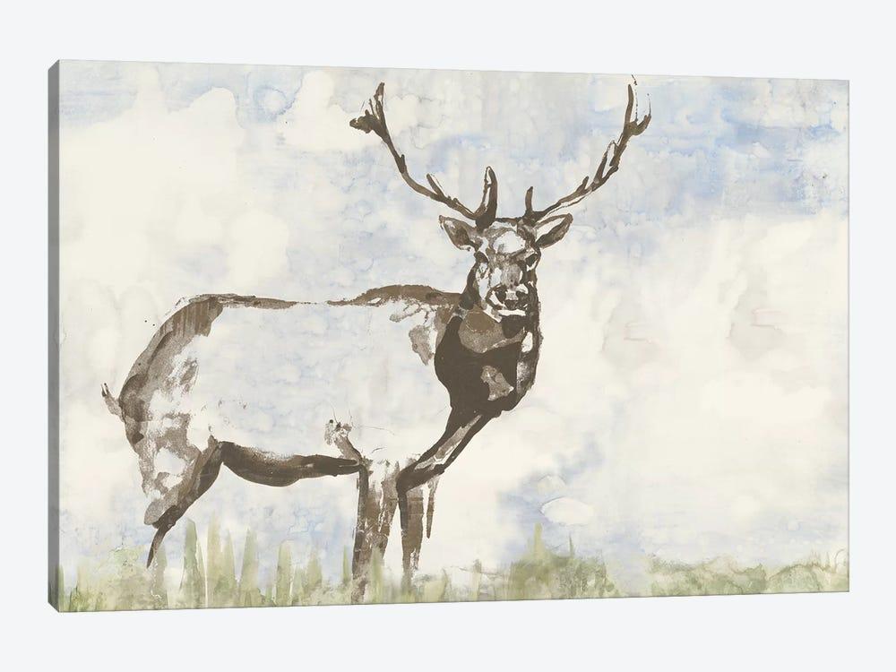 Wild Call II by Jennifer Goldberger 1-piece Canvas Wall Art