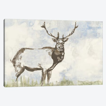 Wild Call II Canvas Print #JGO357} by Jennifer Goldberger Canvas Wall Art