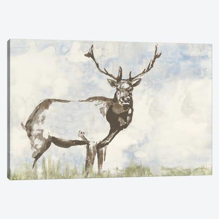 Wild Call II Canvas Print #JGO357} by Jennifer Goldberger Canvas Wall Art