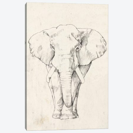 Elephant Portrait I Canvas Print #JGO372} by Jennifer Goldberger Art Print