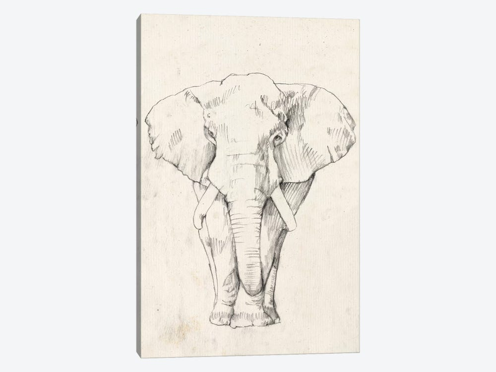 Elephant Portrait I by Jennifer Goldberger 1-piece Art Print