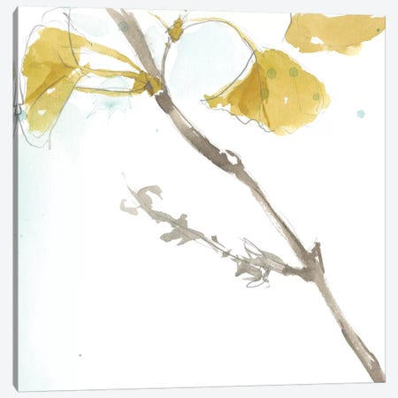 Ginkgo On Dusty Teal VI Canvas Print #JGO390} by Jennifer Goldberger Art Print
