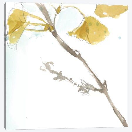 Ginkgo On Dusty Teal VI Canvas Print #JGO390} by Jennifer Goldberger Art Print