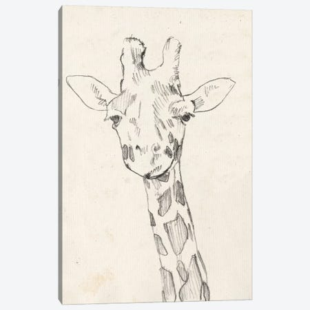 Giraffe Portrait II Canvas Print #JGO394} by Jennifer Goldberger Canvas Artwork