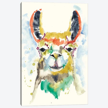 Hi-fi Llama II Canvas Print #JGO396} by Jennifer Goldberger Canvas Artwork
