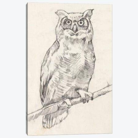 Owl Portrait I Canvas Print #JGO416} by Jennifer Goldberger Canvas Art Print