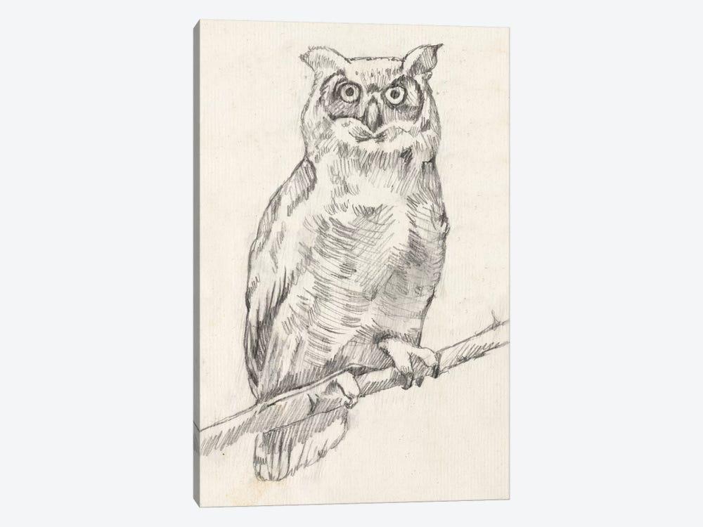 Owl Portrait I by Jennifer Goldberger 1-piece Canvas Art