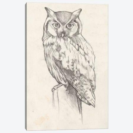 Owl Portrait II Canvas Print #JGO417} by Jennifer Goldberger Canvas Print