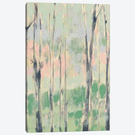 Pastels In The Trees I Canvas Print #JGO422} by Jennifer Goldberger Canvas Art Print