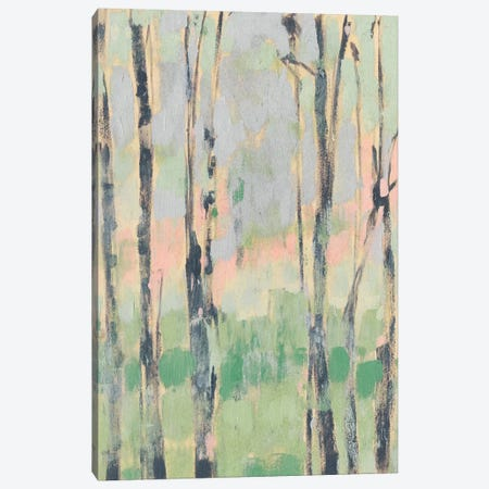 Pastels In The Trees II Canvas Print #JGO423} by Jennifer Goldberger Canvas Art Print