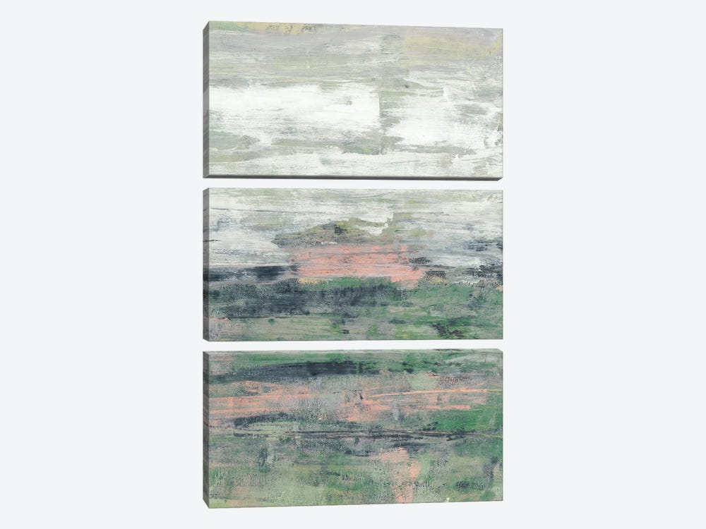 Payne's Blush II by Jennifer Goldberger 3-piece Canvas Wall Art