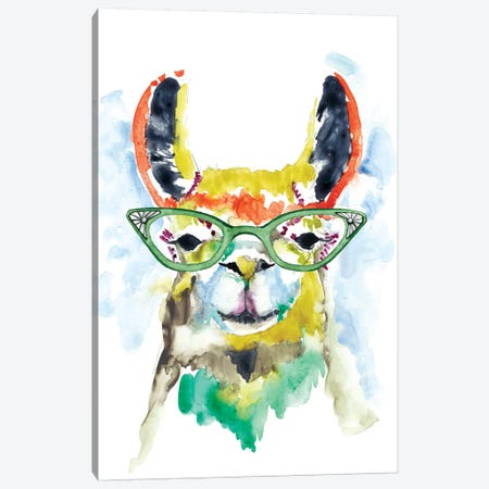 Smarty-Pants Llama Canvas Print #JGO441} by Jennifer Goldberger Canvas Print