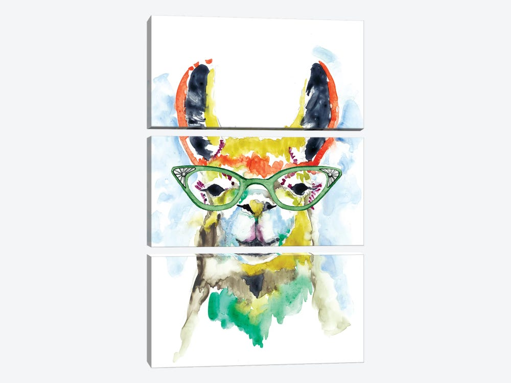 Smarty-Pants Llama by Jennifer Goldberger 3-piece Canvas Wall Art
