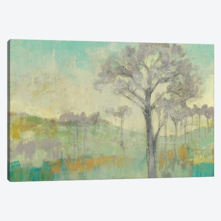 Tree Stand I Canvas Print #JGO451} by Jennifer Goldberger Canvas Wall Art