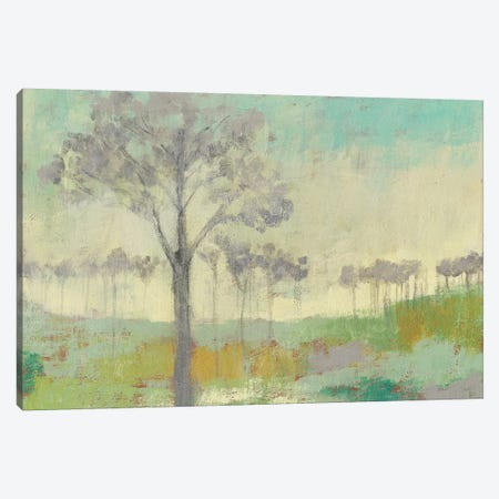 Tree Stand II Canvas Print #JGO452} by Jennifer Goldberger Canvas Art