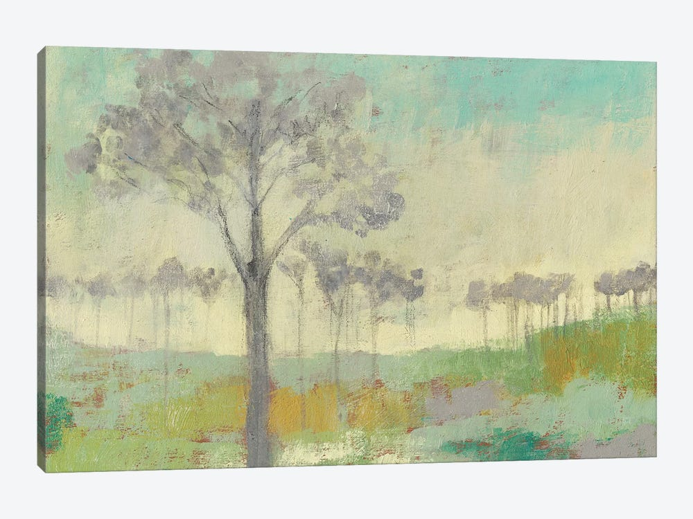 Tree Stand II by Jennifer Goldberger 1-piece Canvas Artwork