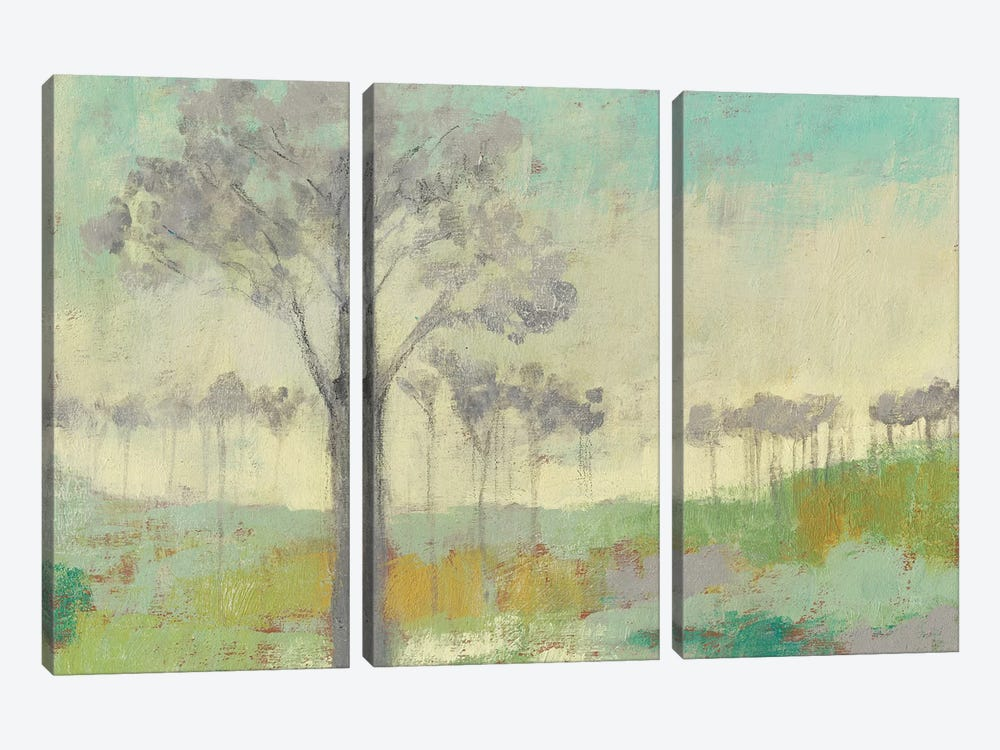 Tree Stand II by Jennifer Goldberger 3-piece Canvas Art