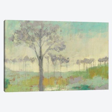 Tree Stand II Canvas Print #JGO452} by Jennifer Goldberger Canvas Art