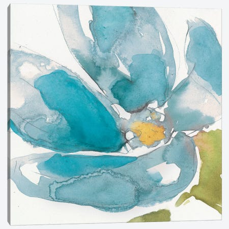 Flower Splash I Canvas Print #JGO46} by Jennifer Goldberger Art Print
