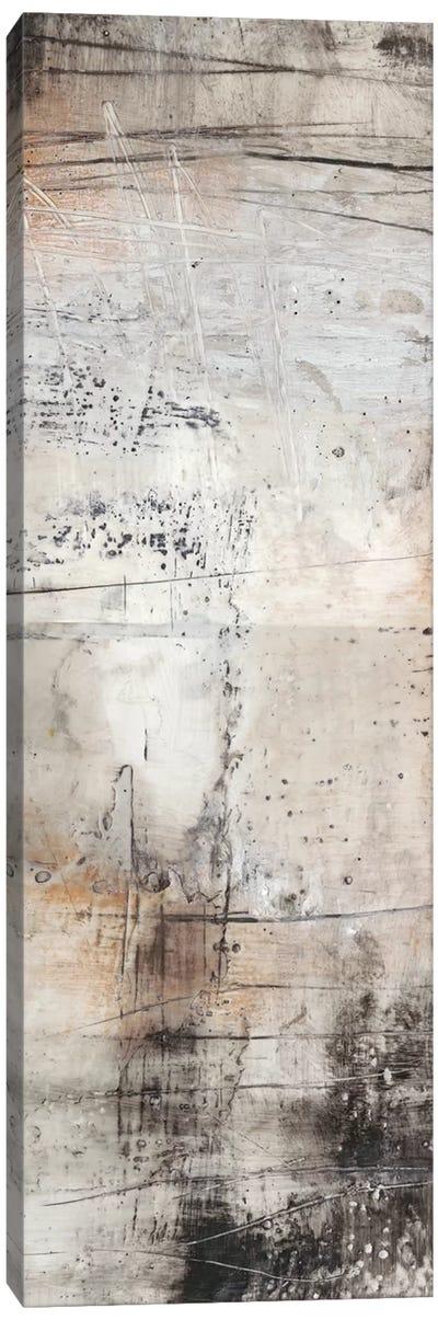 Black, White & Bronze II Canvas Art Print