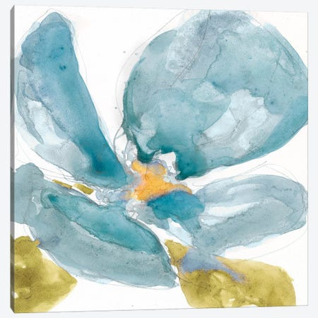 Flower Splash II Canvas Print #JGO47} by Jennifer Goldberger Art Print