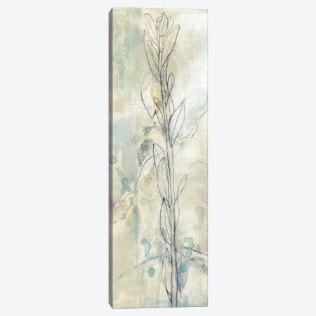 Contour Stem I Canvas Print #JGO481} by Jennifer Goldberger Canvas Print